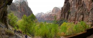 Photograph in Zion National Park.