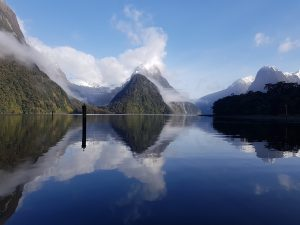Strikingly beautiful photography in Milford Sound, New Zealand. The photo captures the reflection from the waters of the sound showing the adjacent mountains.